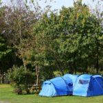 Camping at Hedley Wood