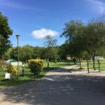 Hedley Wood Brier Meadow