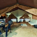 safari-tent